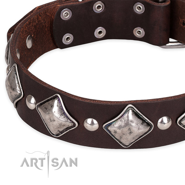 Quick to fasten leather dog collar with almost unbreakable rust-proof hardware
