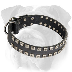Leather Dog Collar with Rivets