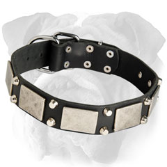 Riveted Leather Dog Collar
