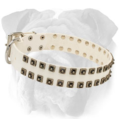 White Leather Dog Collar with Rivets