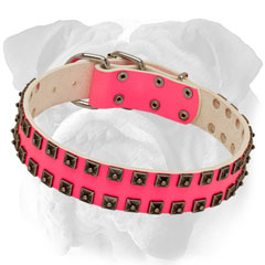 Walking Pink Leather Dog Collar