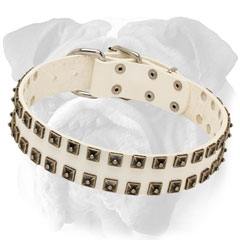Walking White Leather Dog Collar