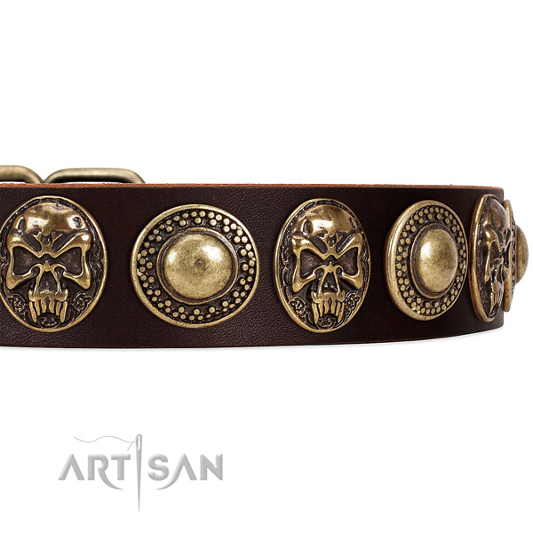 Full grain natural leather dog collar with studs for walking