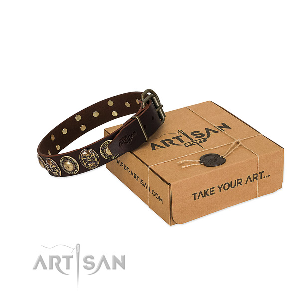 Embellished full grain genuine leather dog collar for daily use
