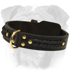 English Bulldog Leather Collar With Brass Hardware