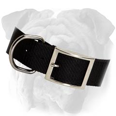 English Bulldog 2 Ply Nylon Collar