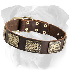 Durable Decorated Leather Dog Collar