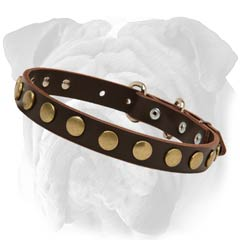 English Bulldog Decorated Leather Collar