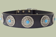 Leather Designer dog collar for ENGLISH BULLDOG