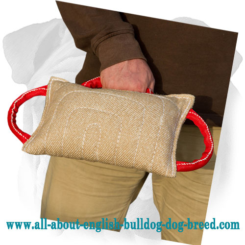 Comfortable Bite English Bulldog Pad