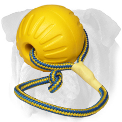 Swinging foam English Bulldog toy on a nylon rope