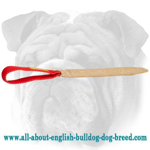 Jute English Bulldog tug for puppy training