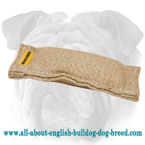 Jute English Bulldog bite tug without handles