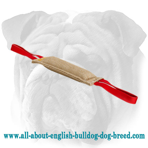 Jute English Bulldog bite tug with two handles