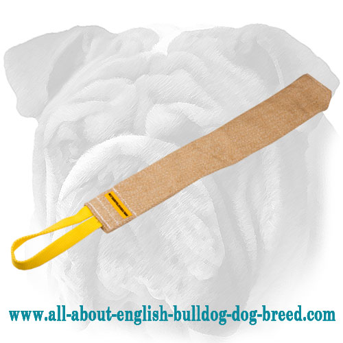 English Bulldog rag with comfortable handle