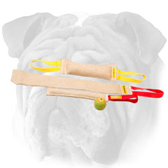 English Bulldog set of tugs for puppy training