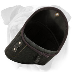 Easy removable shoulder protector for English Bulldog  with Velcro