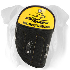 English Bulldog shoulder protector for safety while  attack training