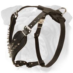 Leather Spiked English Bulldog Harness