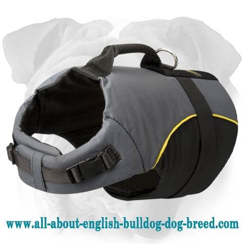 Light Up Adjustable Dog Collar Attachment