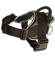 Hug a dog harness for English Bulldog