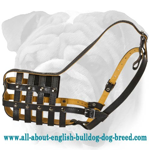 """Daily Comfort"" Leather Dog Basket Muzzle for English Bulldog"