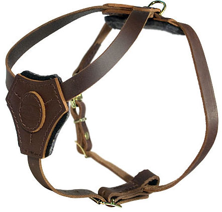 Lightweight Walking and Training Leather English Bulldog Harness for Puppies