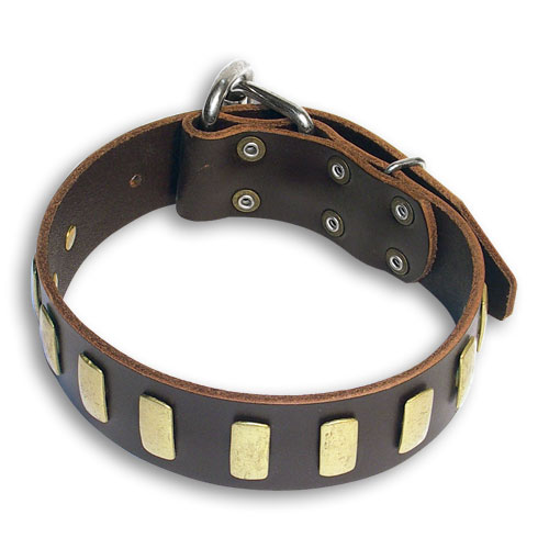 Handcrafted  Bulldog Brown dog collar 18 inch/18'' collar