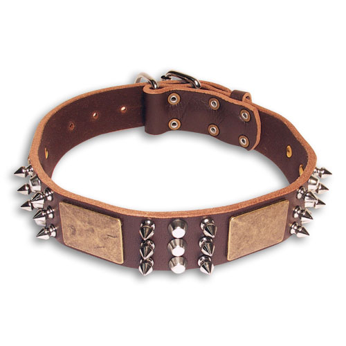 Leather Spiked  Brown collar 25'' for English Bulldog /25 inch dog collar