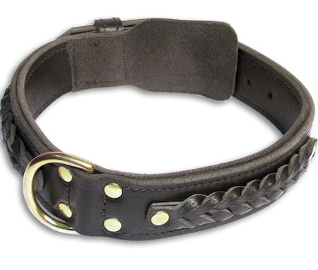 Walking Bulldog Black dog collar 18 inch/18'' collar -C55s33