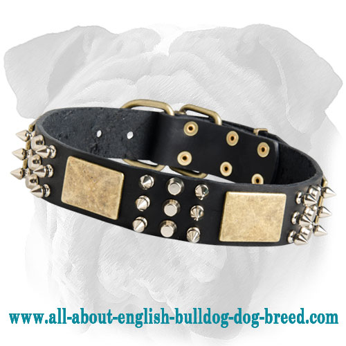 Plated Leather English Bulldog Collar with Spikes and Cones