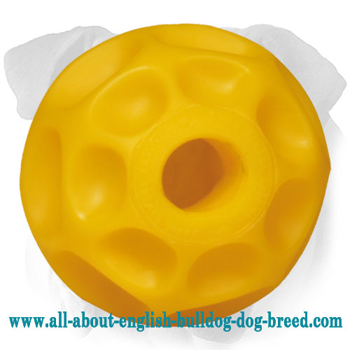 Large Pamper And Challenge Tetraflex English Bulldog Ball