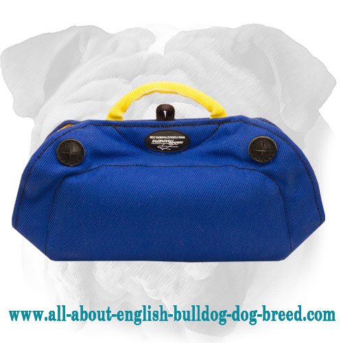 French Linen English Bulldog Bite Builder with 2 Padded Hard Handles