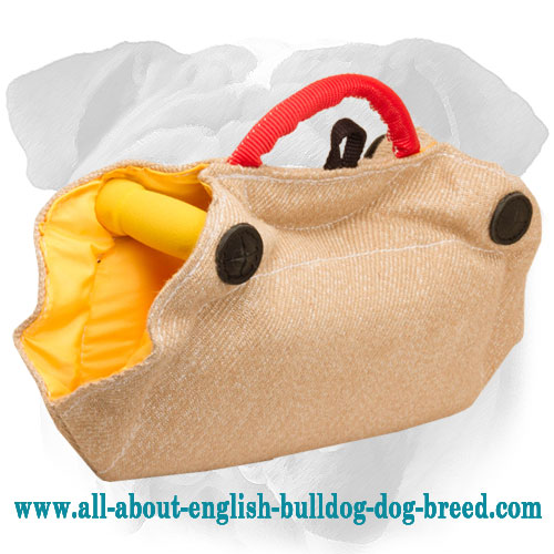 English Bulldog Jute Bite Builder for Puppies and Young Dogs