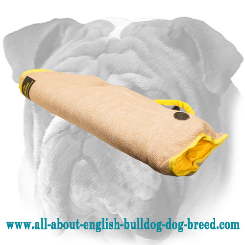 Tear Resistant Introduction English Bulldog Bite Sleeve Made of Jute Material