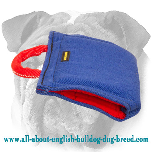 French Linen Bite Protection Sleeve for English Bulldog Puppy