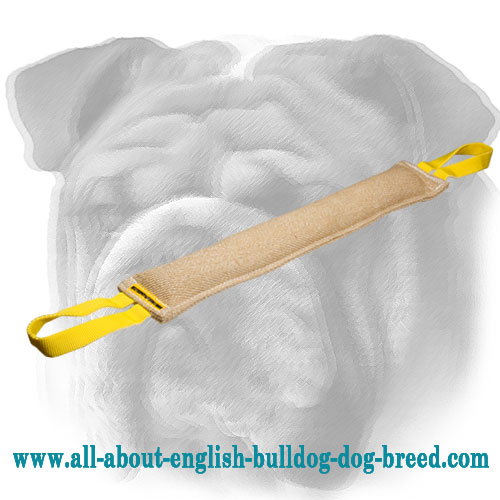 Pro Jute English Bulldog Bite Tug for Young Dog Training
