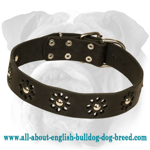 """Chic Goes Overboard"" Genuine Leather English Bulldog Collar with Flowers"