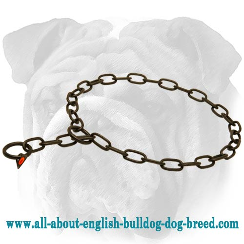 Black Stainless Steel English Bulldog Fur Saver - 1/8 inch (3 mm)