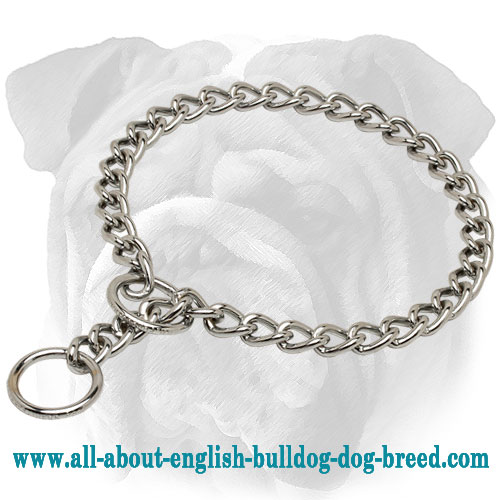 """Style and Obedience"" Chrome Plated English Bulldog Choke Chain Collar - 1/8 inch (3,5 mm)"