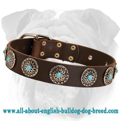 High-Quality Leather English Bulldog Collar with Blue Stones