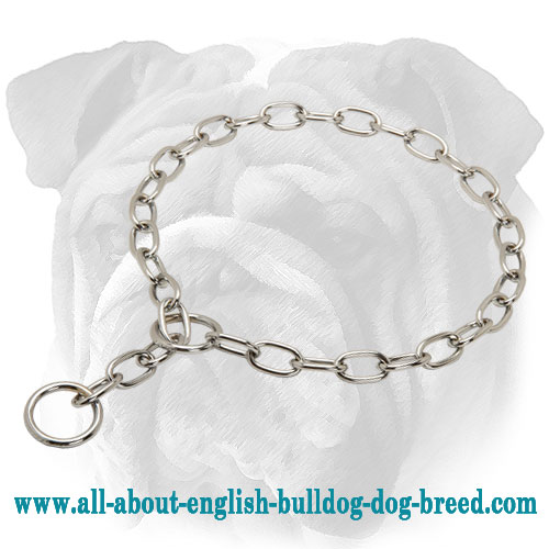 """Immediate Effect"" Chrome Plated Choke Collar for English Bulldog - 1/8 inch (3.2 mm)"