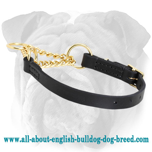 """Stylish Supervisor"" Martingale English Bulldog Collar - 1/6 inch (4 mm)"