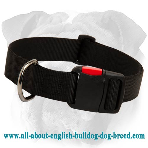 Practical Lightweight Nylon English Bulldog Collar with Quick Release Buckle