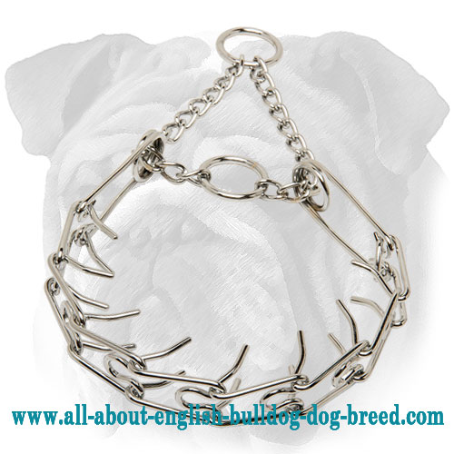 """Iron Tamer"" Chrome Plated English Bulldog Pinch Collar - 1/6 inch (3.99 mm)"