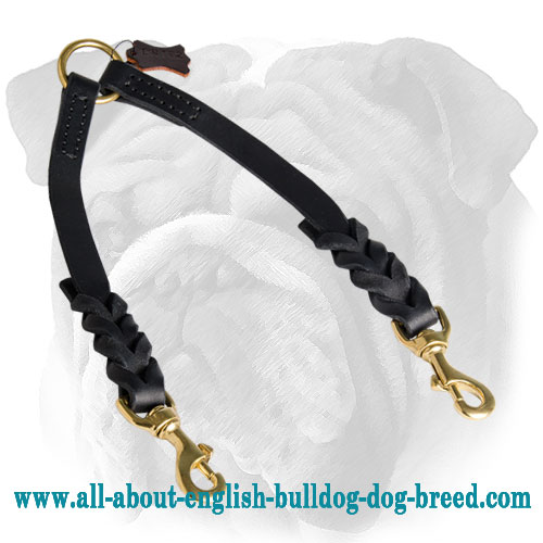 Braided Genuine Leather Coupler for Walking Two English Bulldogs