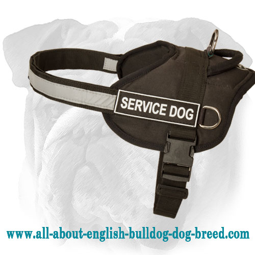 Lightweight Nylon English Bulldog Harness for Service Dogs