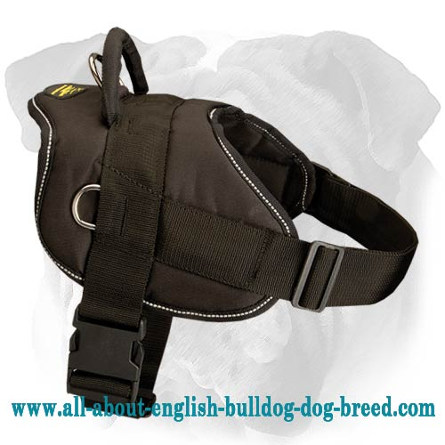 Pleasant Walking Nylon Dog Harness for English Bulldog