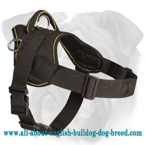 Functional English Bulldog Nylon Dog Harness