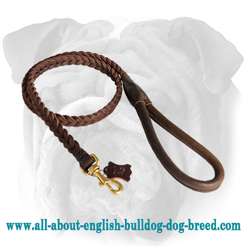 Comfortable Braided Leather English Bulldog Leash with Round Handle